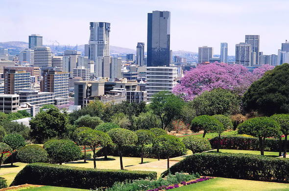 The bustling city centre of Pretoria bordered by a green area of jacaranda trees.